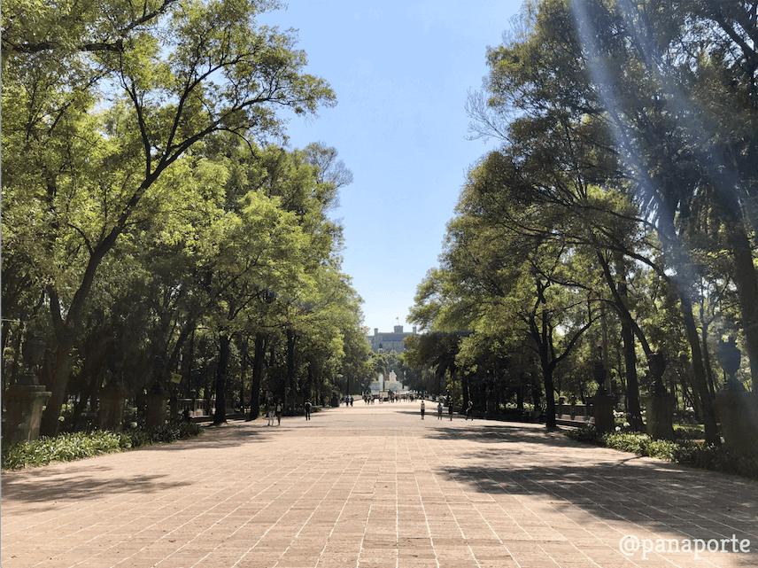 Bosque de Chapultepec 002
