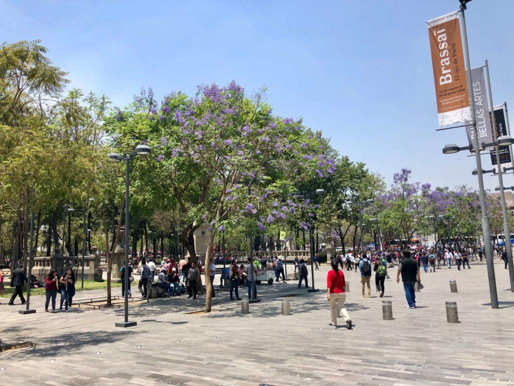 Parque La Alameda 002