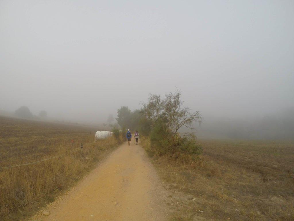 Camino de Santiago 14
