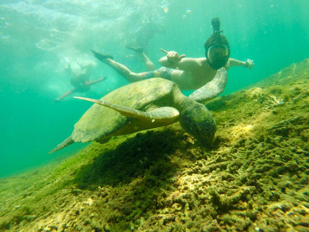 Boca Chica Isla Gamez 3