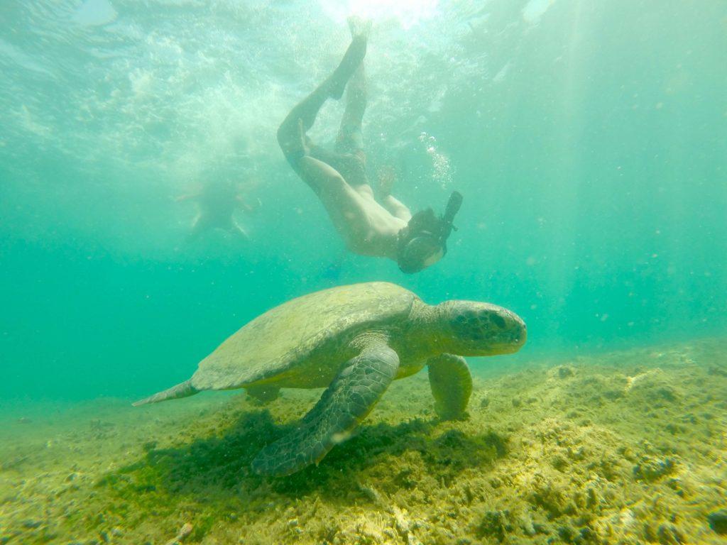 Boca Chica Isla Gamez 4