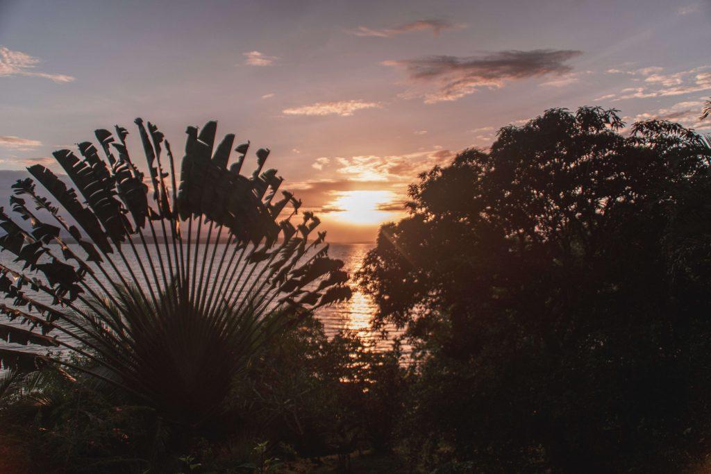 Panaporte Bocas del Toro 26