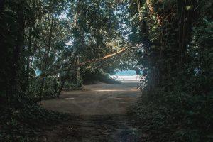 Panaporte Bocas del Toro 5